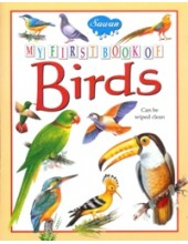 My First Book of Birds