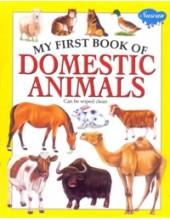 My First Book of Domestic Animals