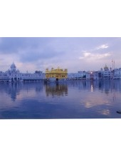 Golden Temple - GT15