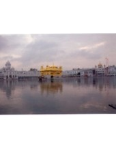 Golden Temple - GTS29