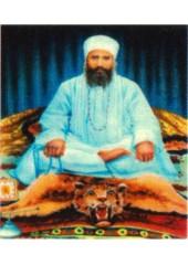 Baba Isher Singh Ji Nanaksar Kaleran - SSW847