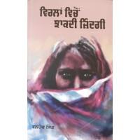 Virlan Vichon Jhakdi Zindagi - Novel By Baldev Singh