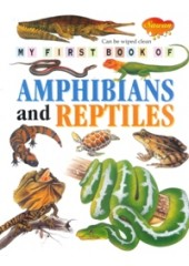 My First Book of Amphibians and Reptiles