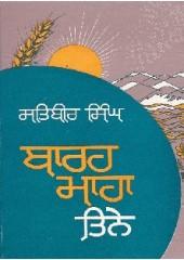 BarahMah Tine - Book By Satbir Singh
