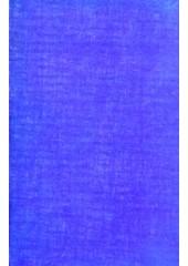 Shabad Anukramnika te Kosh Kabit Savai Bhai Gurdas - Book By Dr. Amritpal Kaur