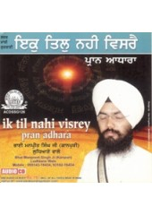 Ik Til Nahi Visrey - Audio CDs By Bhai Manpreet Singh Ji Kanpuri