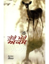 Tere Mere Aks - Book By Jinder