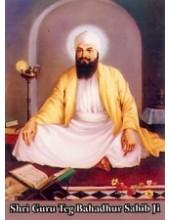 Sikh Gurus - SG9