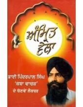 Amrit Vela - Book By Bhai Pinderpal Singh ji Kathavachak