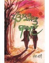 Patjhar Ton Baad - Book By Makhan Kranti