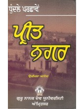 Dhundle Parchaaven Preet Nagar - Book By Urmila Anand