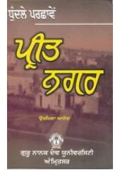 Dhundle Parchaaven Preet Nagar - Book By Urmila Anand