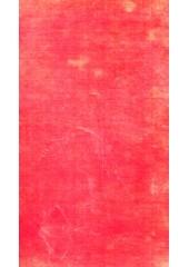 The Spirit of Oriental Poetry - Book By Puran Singh