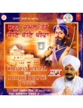 Charan Kamal Tere Dhoye Dhoye Peewa - MP3s of Bhai Harbans Singh Ji Jagadhri Wale