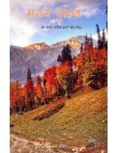 Matak Hulare - Book By Bhai Vir Singh Ji
