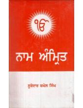 Nam Amrit Book By Subedar Baghel Singh