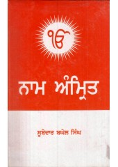 Nam Amrit Book By Subedar Baghel Singh