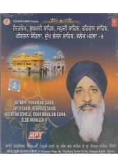 Nitnem, Sukhmani Sahib, Japji Sahib, Rehras Sahib, Kirtan Sohela,Dukh Bhanjan Sahib, Salok Mahalla 9 - MP3 By Bhai Tarlochan Singh Ji