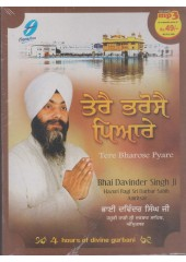 Tere Bharose Pyare - MP3 By Bhai Davinder Singh Ji