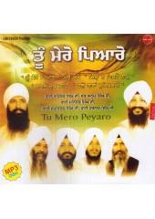Tu Mero Peyaro - MP3 By Bhai Ravinder Singh Ji, Sant Anup Singh Ji, Bhai Maninder Singh Ji, Bhai Satvinder Singh Ji, Bhai Harnam Singh Ji