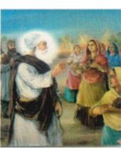 Sikh Historical - HI849