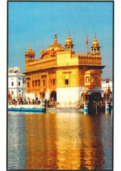 Golden Temple - GTS644