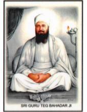 Sikh Gurus - SG400
